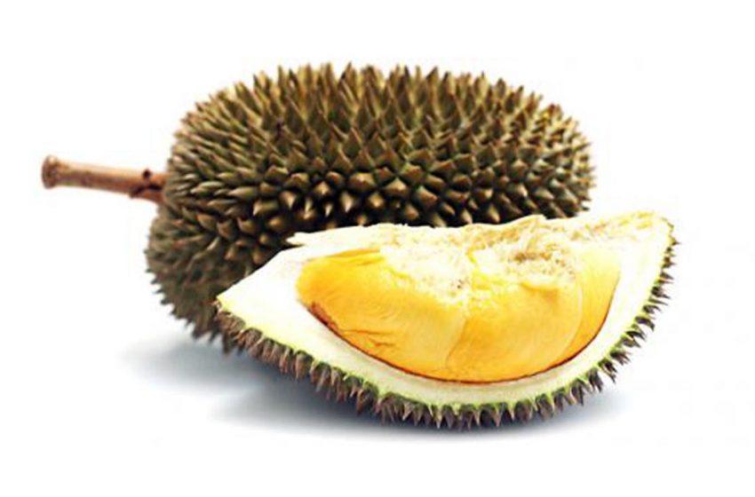 Ini Segudang Manfaat Buah Durian bagi Kesehatan